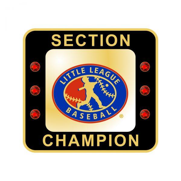 Little League Baseball Section Ring