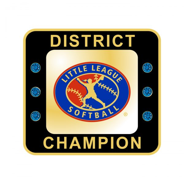 Little League Softball District Ring