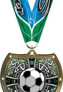 Soccer Shield Insert Medal