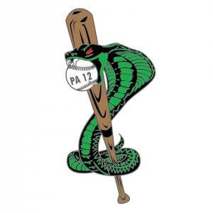 PA 12 Baseball Pin