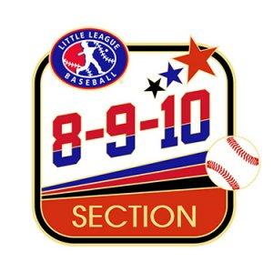 Baseball 8-9-10 Section Pin