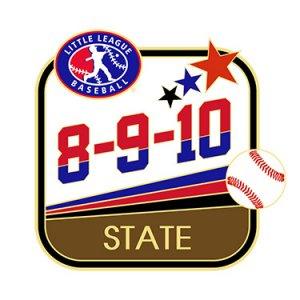 Baseball 8-9-10 State Pin