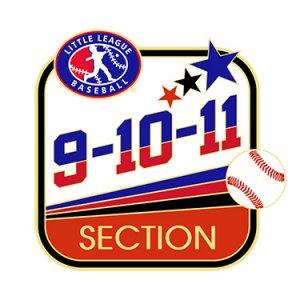 Baseball 9-10-11 Section Pin