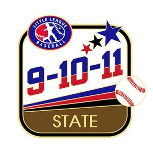 Baseball 9-10-11 State Pin