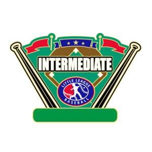 Baseball Intermediate All Purpose Pin