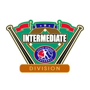 Baseball Intermediate Division Pin