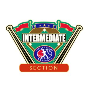 Baseball Intermediate Section Pin
