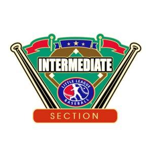 Baseball Intermediate Section Pin
