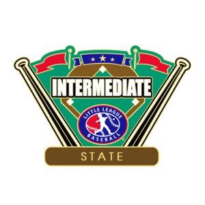 Baseball Intermediate State Pin