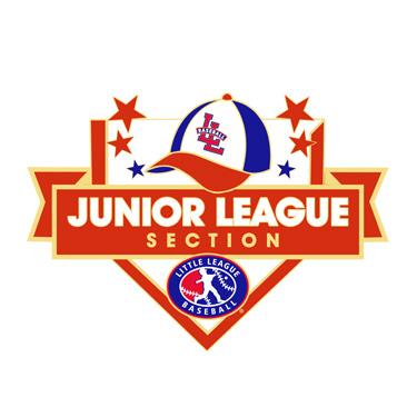 Baseball Junior League Section Pin