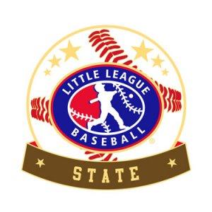 Baseball Little League State Pin