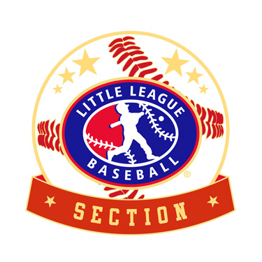 Baseball Little League Section Pin