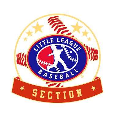 Baseball Little League Section Pin