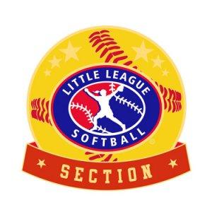 Softball Little League Section Pin